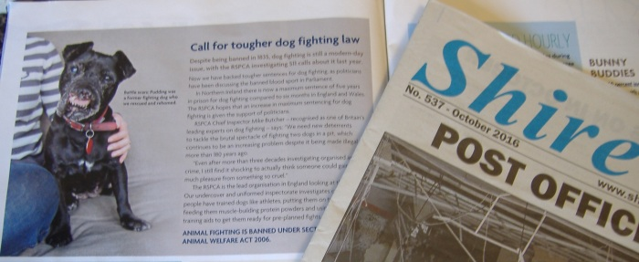 rspca-newspaper